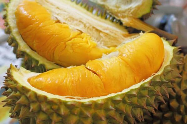 Durian Medan