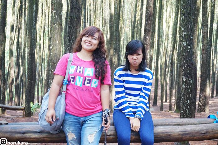 hutan-pinus-mangunan5-borukaro - Borukaro Story