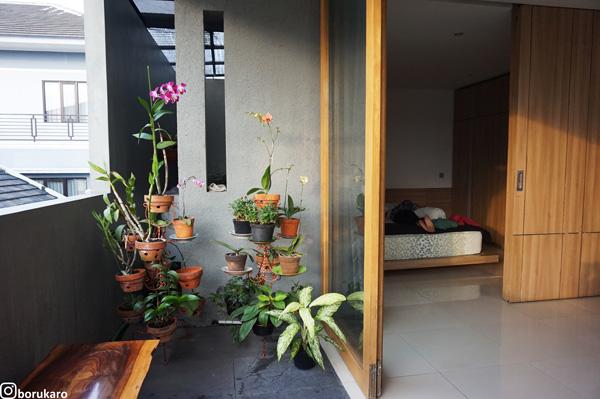 Bunga pot di lantai 2.